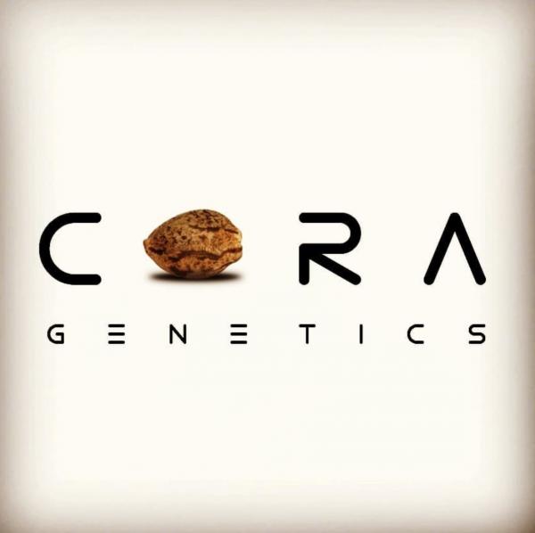Cora Genetics